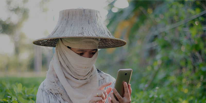 Farmer using cellphone